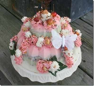 Vogelvoer in de vorm van een taart!  Leuk voor de vogels én voor jou!
