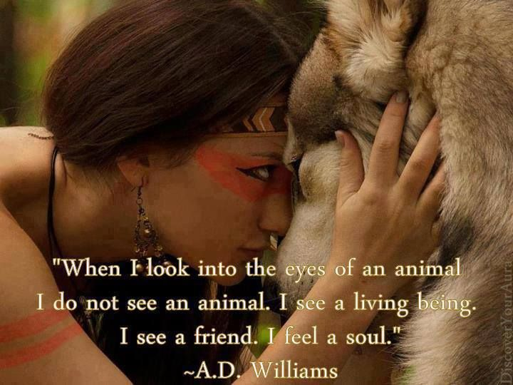 """When I look into the eyes of an animal, I do not see an animal. I see a living being. I see a friend. I feel a soul."" - A.D. Williams:"