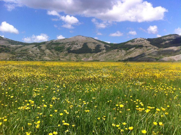 La primavera all'Altopiano di Rascino