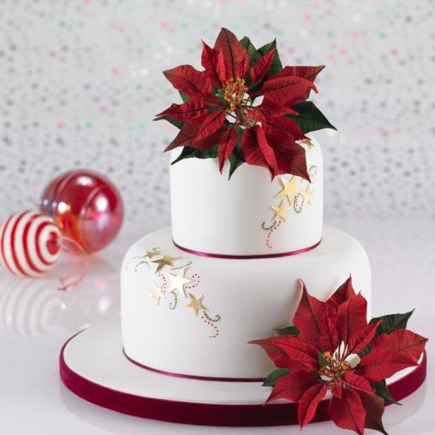 Christmas Cake Decorations Flowers: 91 Best Alan Dunn Sugarcraft Images On Pinterest