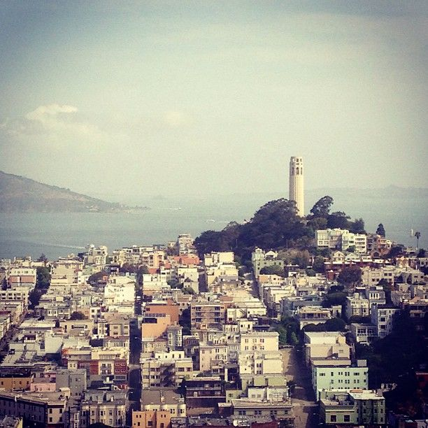 15 Fun Things To Do in San Francisco   Crnchy