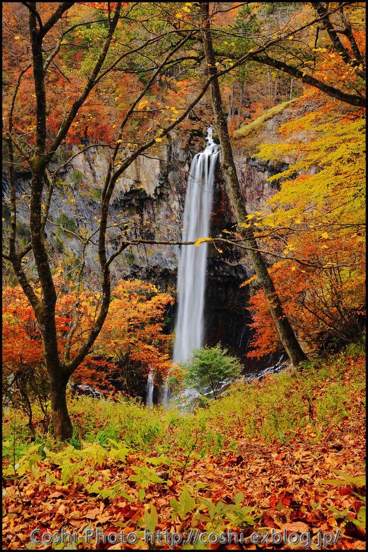 大人気の日光では、滝と紅葉の組み合わせを楽しめる。例年見頃は10月中旬~10月下旬