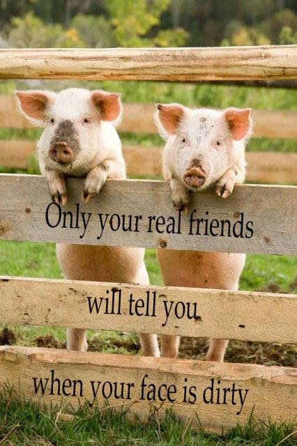 Only your real friends... ;)