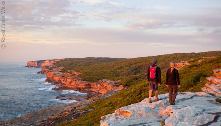 Imagine having Sydney's Royal National Park all to yourself. Hiking as the sun comes up is such a perfect experience.