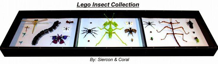 LA CIENCIA DE LA VIDA: 10 espectaculares insectos de LEGO