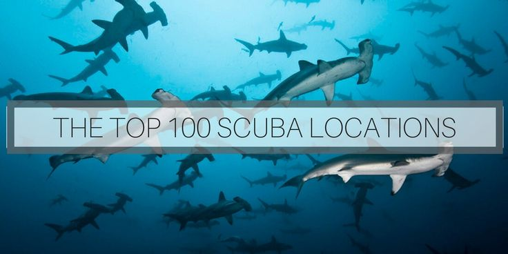 Here is the ultimate list of the best scuba diving in the world: The top 100 locations! If you love scuba diving, these locations are your dream!