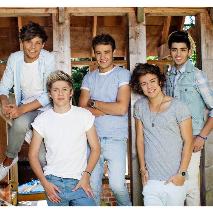 Brewster One Direction Barn Vinyl Wall Mural