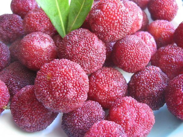 Yangmei - Chinese Strawberry