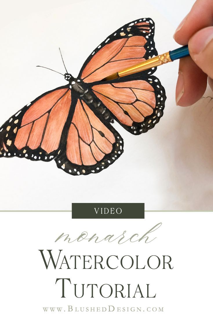 Monarch Butterfly Watercolor Tutorial Watercolour Tutorials