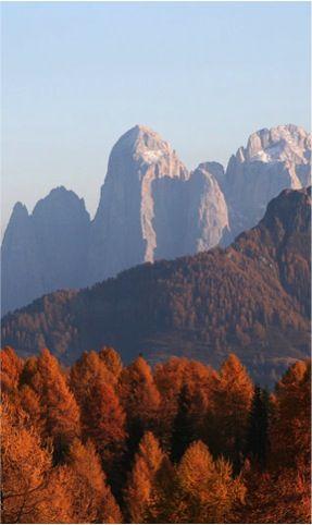 Dolomites in autumn, Predazzo, Sud Tirol #Italy | Discover travel tips -> www.gadders.eu/destination/place/Predazzo