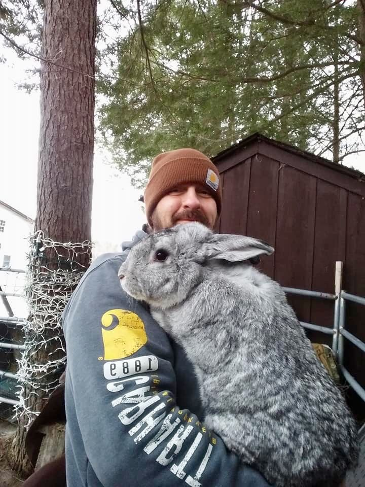 Diy Hutch Rabbit