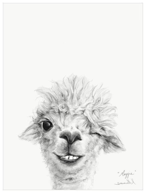 Llama Draw You A Portrait Maggie Wall Art Llama Drawing Llama