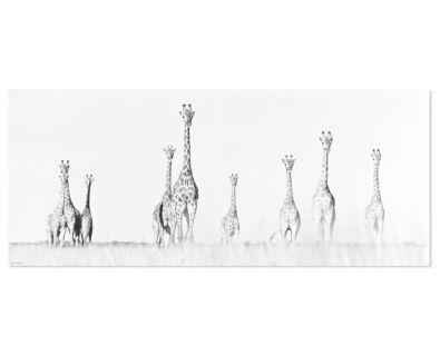Wall Art - Giraffe Canvas