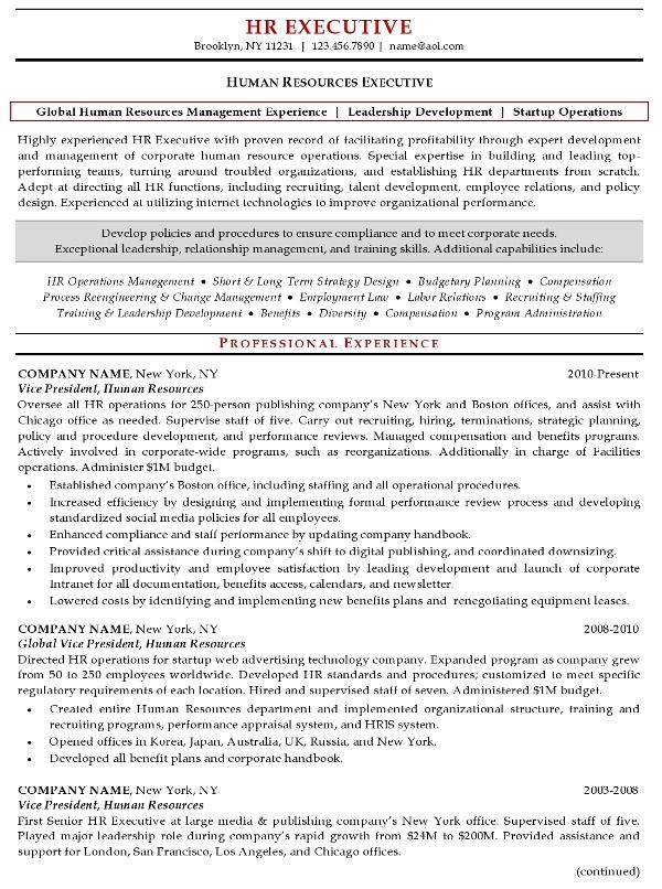 The 25+ best Executive resume ideas on Pinterest Executive - hr sample resume