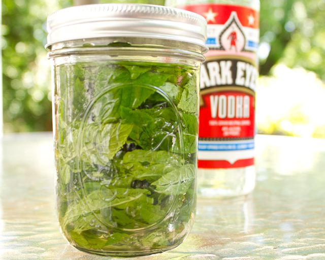 Make Homemade Mint Extract - use for mint chocolate yumminess and save some for gift giving at Christmas