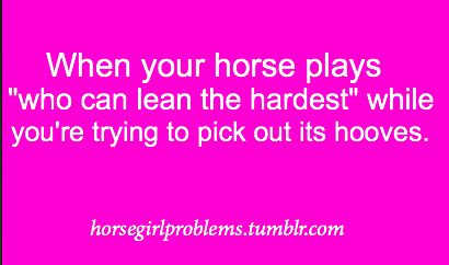 horse problems