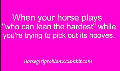 horse problems