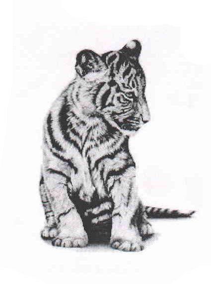 This listing is for one high quality temporary tattoo of Asian Tiger Temporary Tattoo.    Size: approximately 1.5 X 1.5    SomaArtTattoo temporary