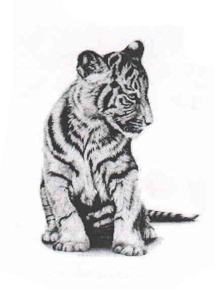 Asiatische Tiger temporäre Tattoo von SomaArtTattoo auf Etsy
