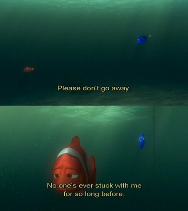 21 best Dory images on Pinterest | Funny images, Funny photos and Ha ha