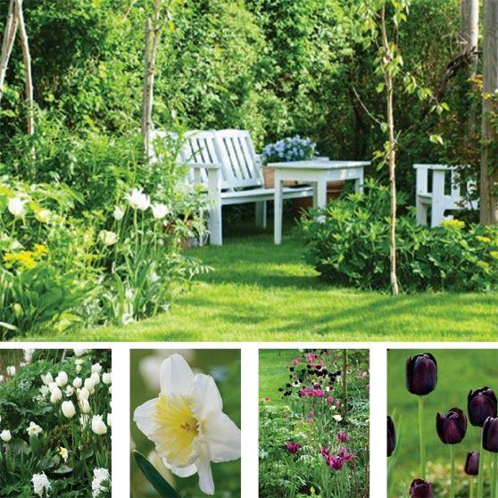 HavePlaner og PlanteBegejstring: ÅRET I HAVEN