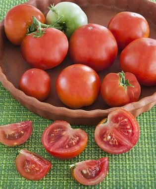 Tomato : Patio Tomato - Great for container planting.
