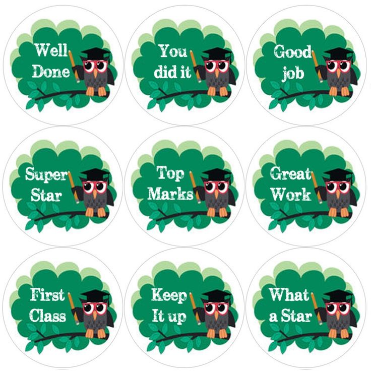 <p>These Owl Teacher themed reward stickers are perfect to make a big impression on young learners and can be used with any Reward System.</p>