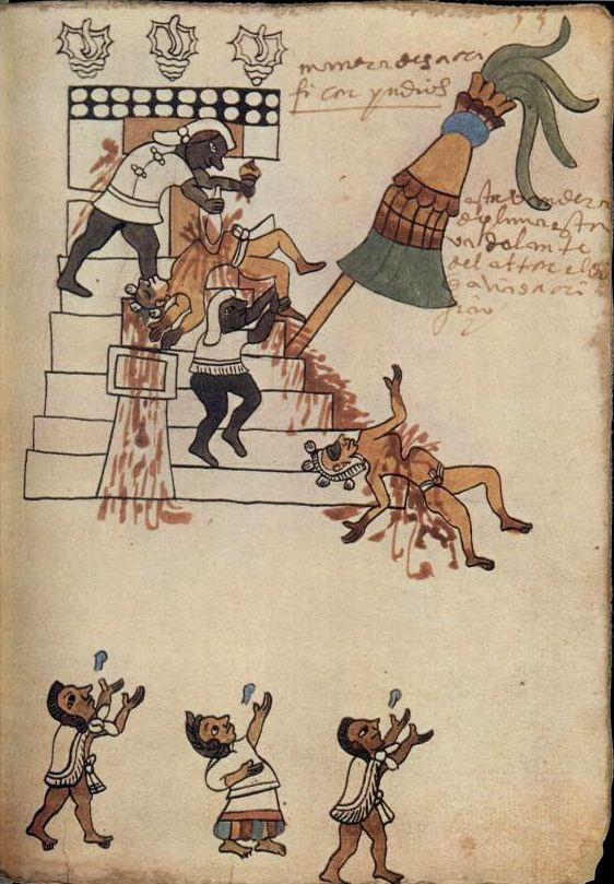 quotc243dice tudela c243dice del museo de am233ricaquot folio 53r