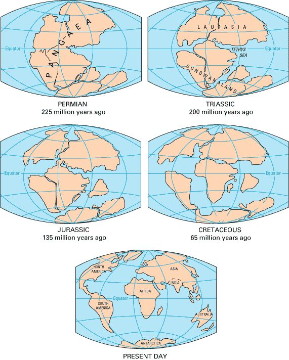 Best Pangea Supercontinent Images On Pinterest Continents - Pangaea map