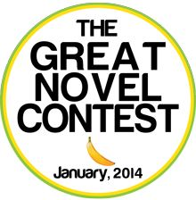 2014 Second Annual Great Novel Contest < $40 Entry Fee. Deadline: January 31st.