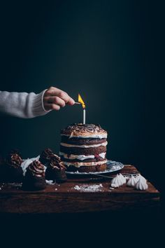 Chocolate cake with browned meringe and raspberry jam / recipe / food photograph…