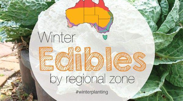 Winter Herbs Fruit Vegies (Vegetables) Planting Guide Australian Temperate Regional Zones | About the Garden Magazine | About The Garden Magazine