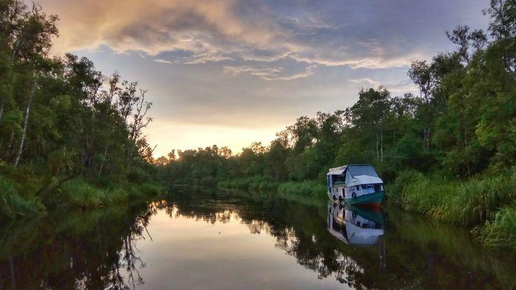 Sekonyer River at dusk.