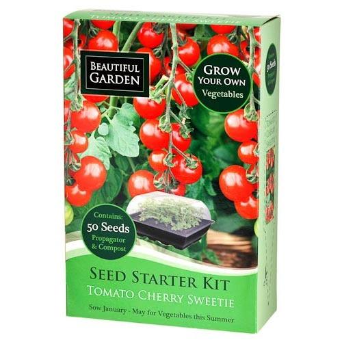 Cherry Tomato Seed Starter Kit | Poundland