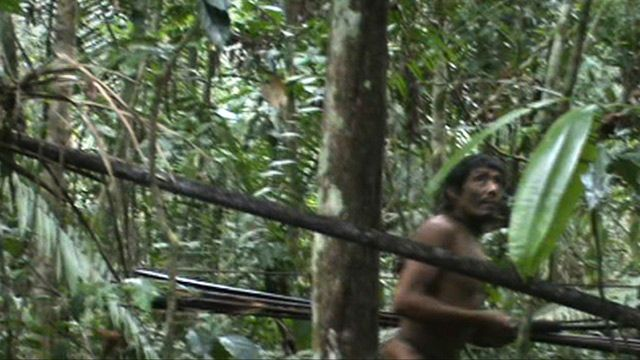 Amazonian tribe in Brazil caught on camera for first time - video