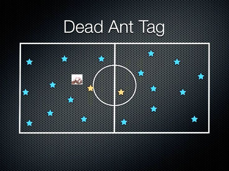 Physical Education Games - Dead Ant Tag (+playlist)