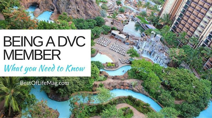 What You Need to Know about Being a Disney Vacation Club Member