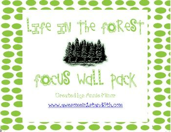 focus wall in a 1st grade classroom that utilizes Reading Street ...