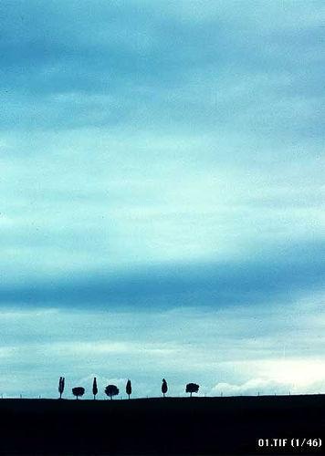 omaggio a F.F.1 - Kodachrome // - 1978 Ph by Lauro Ghedini