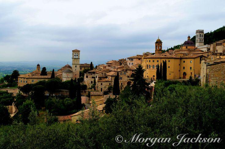 #TheTravellingSchipperke #Travel #Wanderlust #Italy #Assisi #Architecture #Church