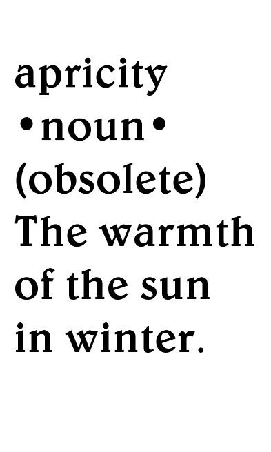 ".WORD OF THE DAY: n. apricity (plural apricities) The warmth of the Sun in winter.From  the Latin aprīcitās, noun of quality from aprīcus (""warmed by the sun"")."