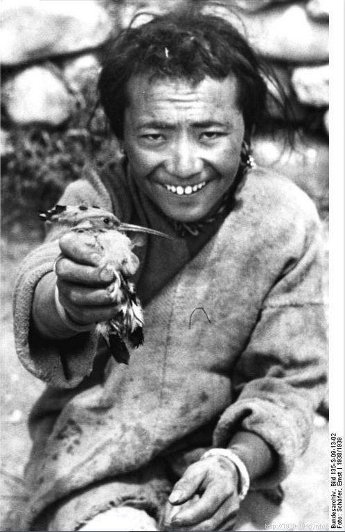 File:Bundesarchiv Bild 135-S-09-13-02, Tibetexpedition, Tibeter mit Wiedehopf.jpg Title Tibetexpedition, Tibeter mit Wiedehopf Original caption Gyantse-Saugang, Wiedehopf Archive description Gyantse-Saugang Depicted place Tibetexpedition