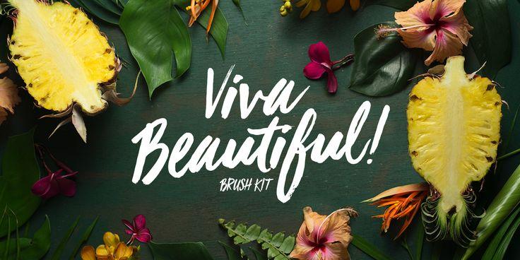 Viva Beautiful - Webfont & Desktop font « MyFonts