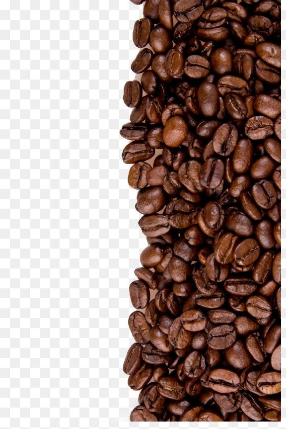 Vector Coffee Cup Coffee Beans Vector Mug Coffee Beans Png Transparent Clipart Image And Psd File For Free Download Coffee Substitute Coffee Diet Coffee Alternative