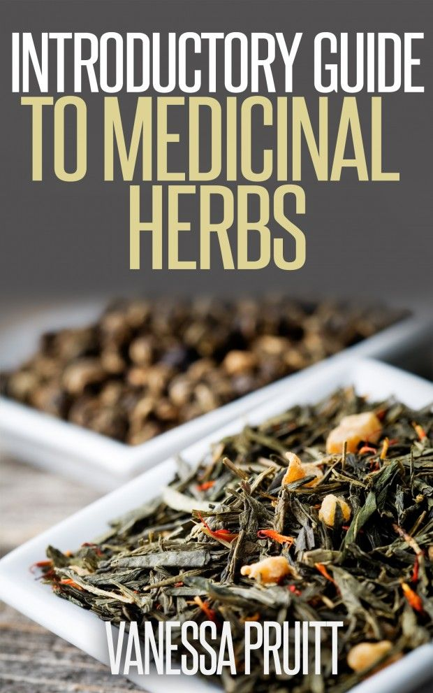 FREE EBOOK - Introductory Guide to Medicinal Herbs - Natural Family Today