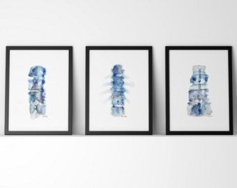 Set of Three Vertebrae Prints Cervical Thoracic and by LyonRoad