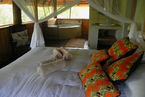 Marloth Kruger Little Manor Self Catering House In Marloth Park, Kruger Park, Mpumalanga See more on http://www.wheretostay.co.za/marlothkrugerlittlemanor-self-catering-marloth-park-accommodation-kruger-park  The house comprise 4 rooms, a lounge area with TV and dining area, as well as a lapa with a bar / swimming pool and braai area overlooking the bush veld from where you can view the animals in close proximity, as well as an abundance of bird life of more than 200 species.