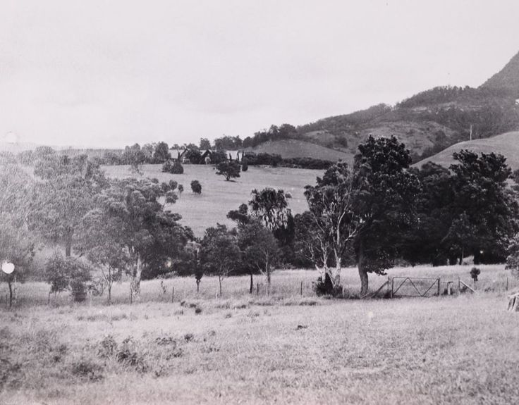 early view towards Gleniffer Brae, Wollongong