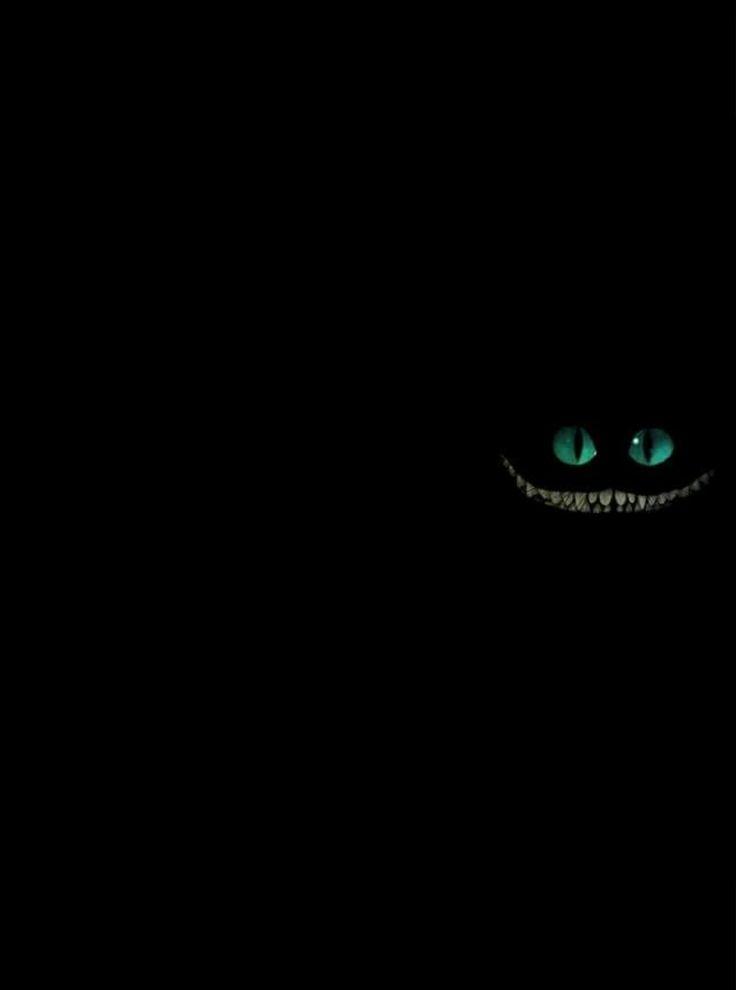 Épinglé par 🌸Vaness 🌸 sur Chat du cheshire   Chat de cheshire, Chat, Cheshire