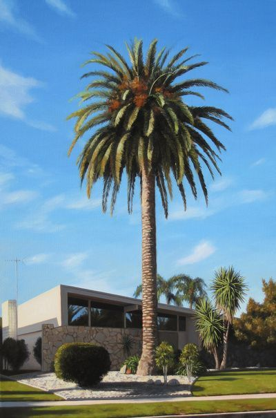 15 Best New Mexico Palm Trees Images On Pinterest Palm
